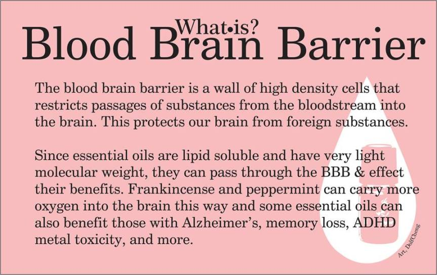 blood-brain-barrier