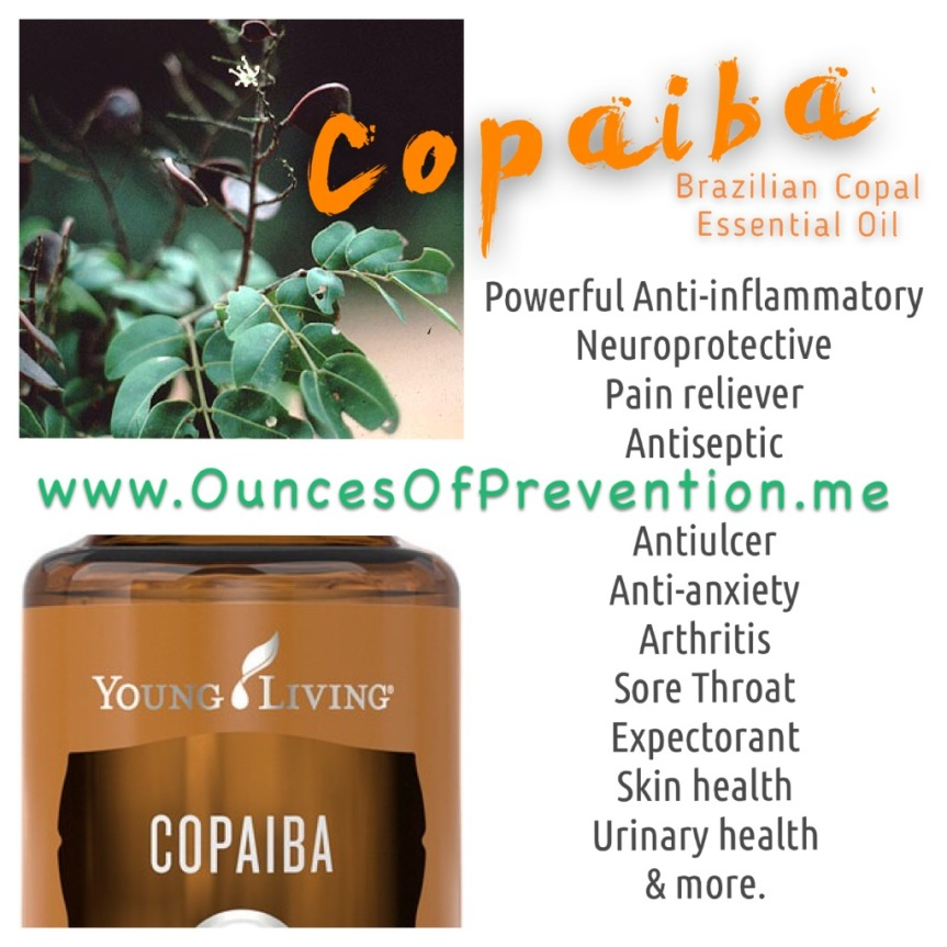 copaiba-graphic