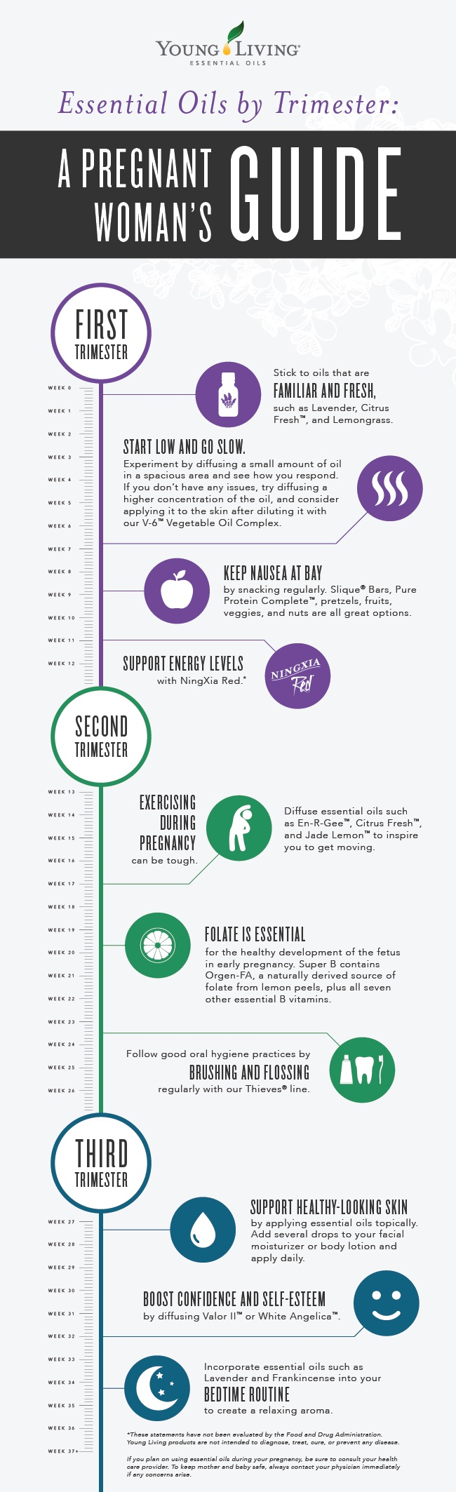Blog-Pregnancy-EOs_Infographic_US-01